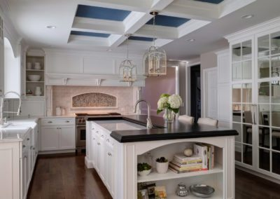 Bright and Bold Glen Ellyn Kitchen Design