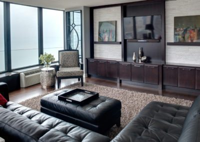 Chicago Cityscape Living Room Remodel